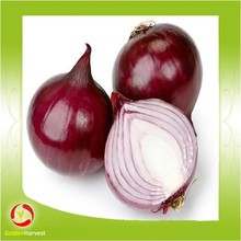 Best Quality Fresh Red Onion For Sale