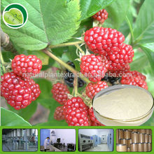 Health care material raspberry leaf extract