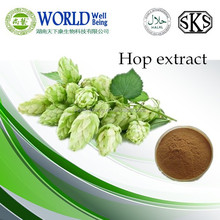 Hot Sale GMP Certificate 100% Pure Natural hops extract powder capsule
