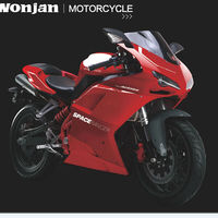 300cc best selling motorcycle for sale (WJ300GS)