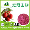 factory supply 100% Natural Cranberry Juice Powder, Bilberry Juice Powder,Dried Cranberry Fruit Powder