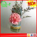 novos produtos de plástico mini vasos decorativos artigosdejardinagem