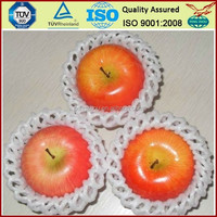 BV Onsite Check Assessed Supplier Malaysia Market Popular Wholesale EPE Mesh Net For Fruit