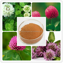red clover extract/red clover extract powder/red clover extract / isoflavones