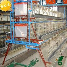A type steel material galvanized chicken cage with plastic water tank