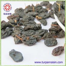 Turpan Dry raisin Black raisin high quality sweet Currant Raisin price