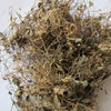 Factory Supply Top Grade Natural Herb Centella asiatica herb