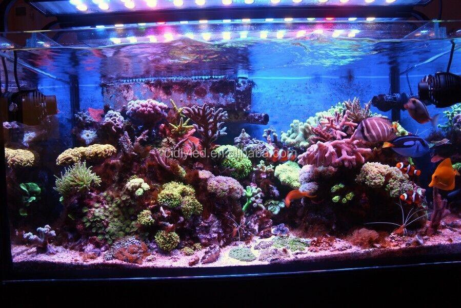 24 36 48inch cidly led aquabar led aquarium light bar blue and white light seawater reef tank. Black Bedroom Furniture Sets. Home Design Ideas