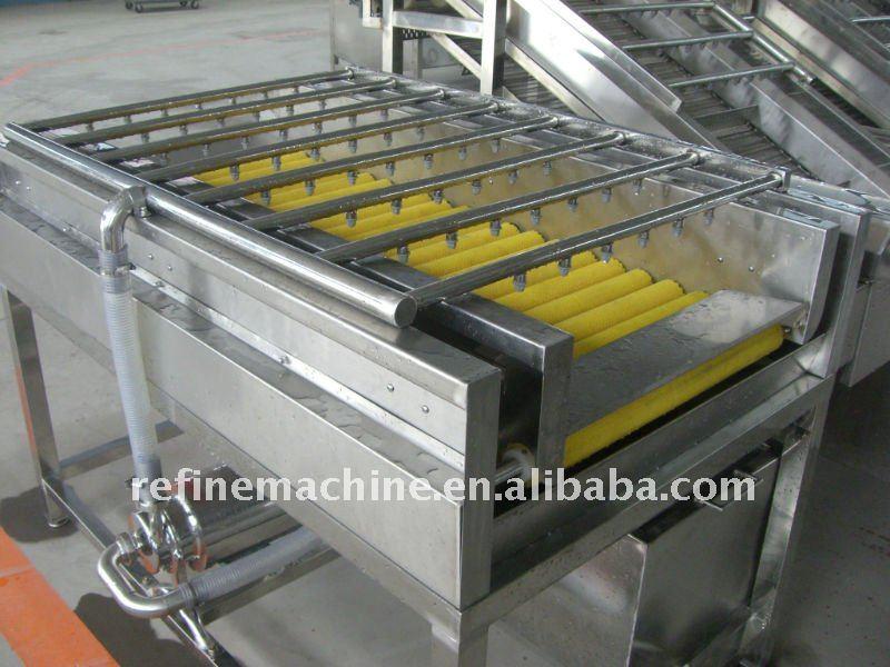 fruit wash machine