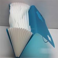 Plastic expandable 13 pockets file folder