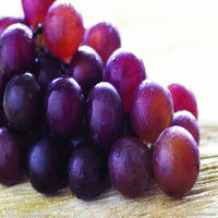 Beauty Skin Cosmetic Grape Seed extract