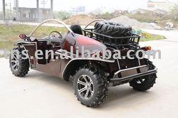 1300cc Buggy