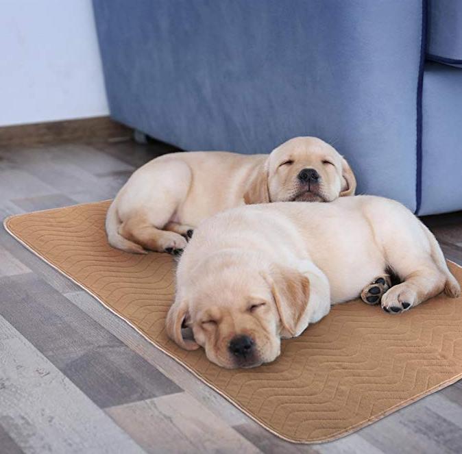 Microfibra de Secagem rápida Pequena Mat Pet para Alimentos/Bebida Trata Ultra-Absorvente & Machine Lavável Esteira de Alimentos para cães e Gatos