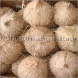 100% organic coconuts to Pakistan