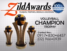 Volleyball Champion Trophy