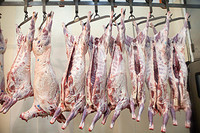 Lamb, Mutton, Beef ,goat meat