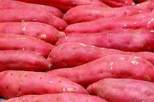 Japanese Fresh Sweet Potato