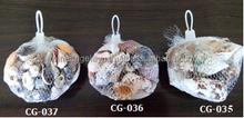 Sea Shells in Fishnet Bundle