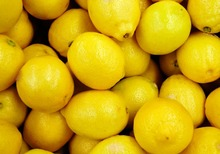 Fresh Citius fruits Fresh Lemons (Grade A) FOR SALE