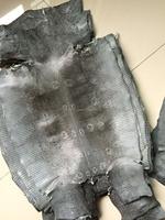 Genuine Reptile Lizard Skin Leather Material Hide Glossy Grey Back Skin