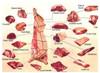 Halal Beef - Shin-Shank bulk