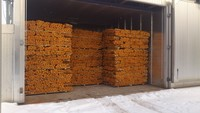 OAK FIREWOOD KILN DRIED
