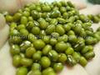 Chinese green mung beans for food grade and 2013 crop green mung bean