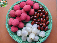 100% Natural Fresh Fruit from Viet Nam with High Quality and Best Price Lychee Peeled