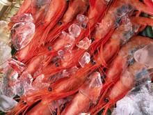 Jumbo Shrimp   Fresh Or Frozen Gulf Shrimp