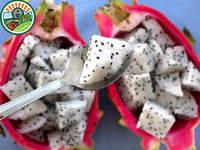 Low-Priced IQF Frozen Dragon Fruit White Chunked Type 1 Hot Sale From Vietnam
