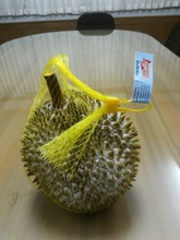 QUALITY FRESH DURIAN FRUITS - NATURAL 100% - COMPETITIVE PRICE