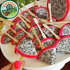 Fresh Fruit from Viet Nam with High Quality and Best Price Dragon Fruit Cut