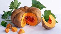 Good Quality Fresh Pumpkin from Vietnam