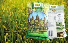 jasmine rice bag cambodia