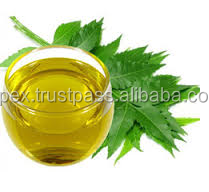 Neem oil-Pure oil Natural Oil for Pest control in Horticulture use