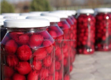 Sour cherry compote (pitted)