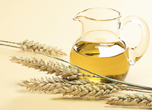 Wheat Germ Oil in Bulk Pure Natural Herbal Carrier Oil for Skin Care Cosmetic Line