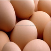 /product-tp/brown-chicken-eggs-50007764740.html