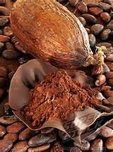 COCOA BEANS -- CACAO EN GRANOS
