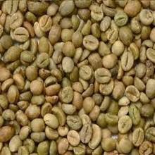non lavati caffè verde fagioli robusta