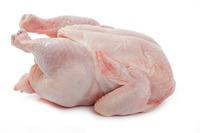 WHOLE SALE SUPPLIER FOR WHOLE FROZEN CHICKEN