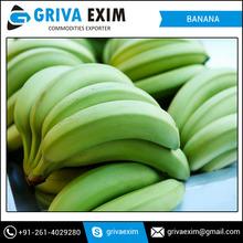 Yellow Banana Exporters From India