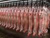 Lamb Carcass whole Halal