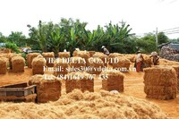Coconut fiber / coconut coir