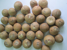 Dried Betel Nut High Quality and Cheap Price From Vietnam