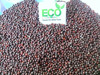 Machine Cleaned Purity 99.8% Mustard Seeds From Gujarat - India
