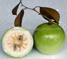 FRESH SWEET STAR APPLE WITH THE BEST PRICE FROM VIETNAM