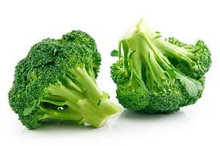 Fresh Broccoli from Germany
