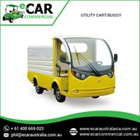 ECAR - Cheap 2 Seat Electric Mini Utility Truck (LT-S2.Ahy)