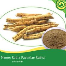 Radix Paeoniae Rubra/Radix paeoniae rubra extract powder